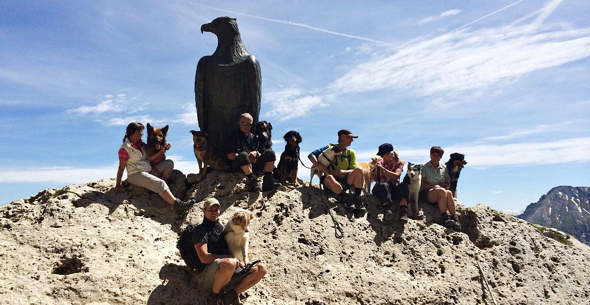 Kletterausrüstung Für Hunde : Alpenüberquerung wandern mtb rennrad u2026 bergschule kleinwalsertal